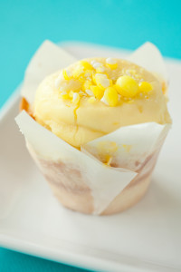 Cupcakes July_0264